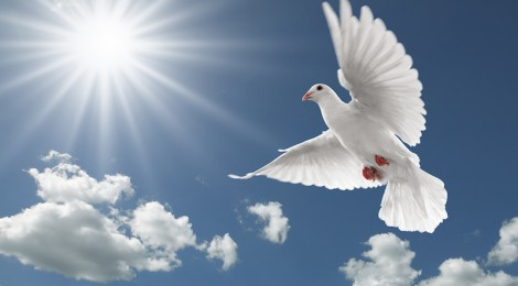 peace-of-god-470x260